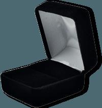 Velvet Case